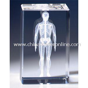 Image 3 Crystal(TM) Human Anatomy