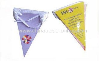 triangle advertising flags from China