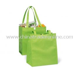 Eco Polypropylene Bag Grocery Set from China