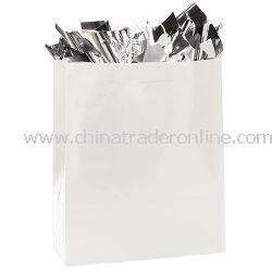 Anna Marie 16-inch Gloss Gift Bag