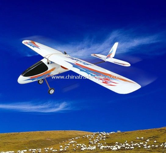 3CH RC Airplane - SnowBird from China