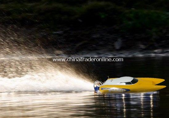 brushless motor mini catamaran boat
