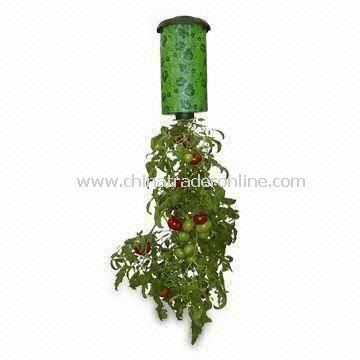 Topsy-turvy Planter, Works with Fresh Herbs and Cucumbers, Suitable for Small Spaces