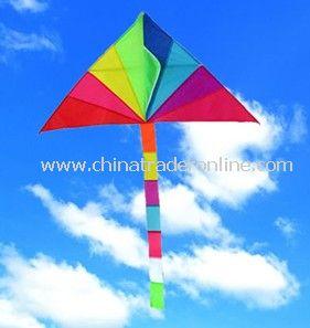 Delta kite