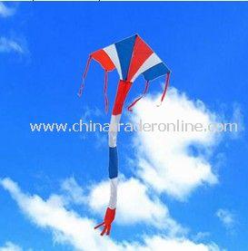 Delta kite from China