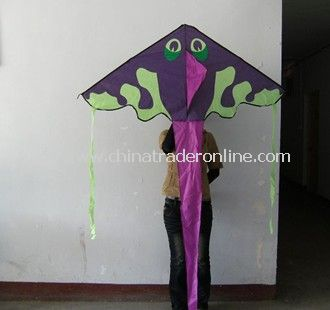 Green frog kite from China