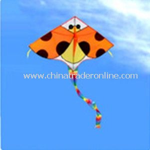 ladybug kite