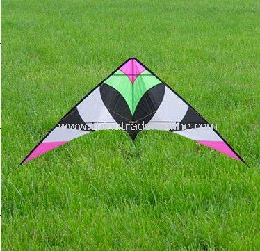 stunt kite from China