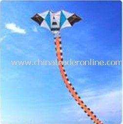 fan kite