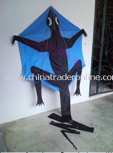 New lizard kite from China