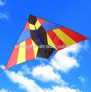 Sun bird kite
