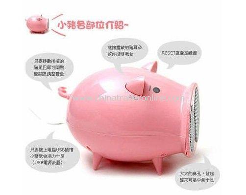 New Arrival piggy wireless Hifi radio