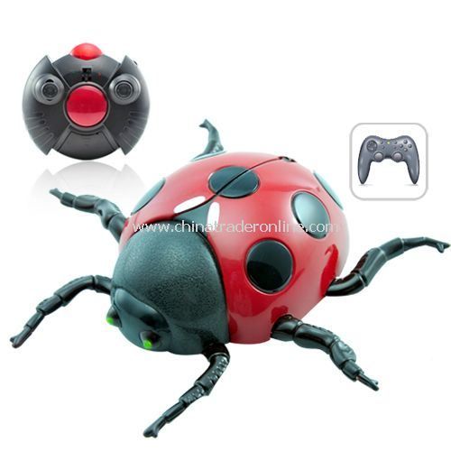 Wall Climbing RC Toy - Lady Bug - Anti Gravity