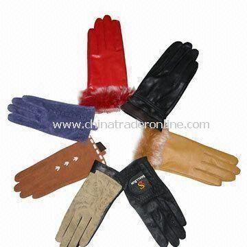 Womens and Mens Leather Gloves with Pig Nappa