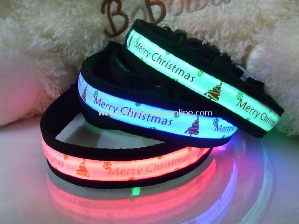 LED Pet Collar from China