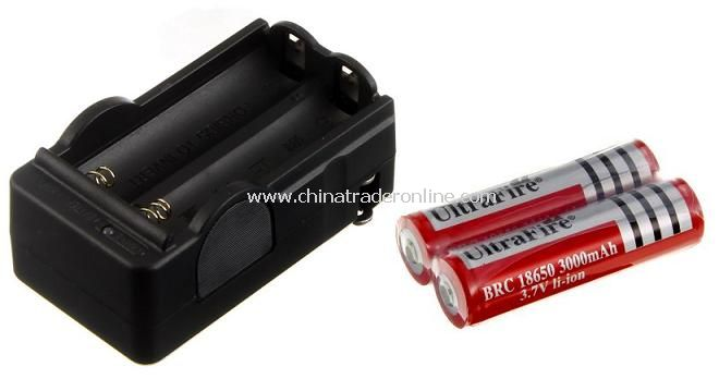 Rechargeable 18650 Lithium Battery Travel Charger with 2pcs 18650 3000mAh PCB Batteries