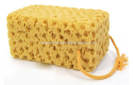 Car house car wash sponge coral