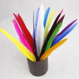 Goose Feather Ballpoint Pens