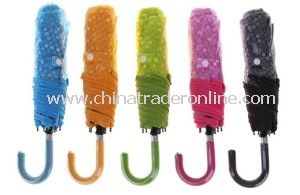 Hot Sale Stylish Custom Leather Section Transparent Umbrella