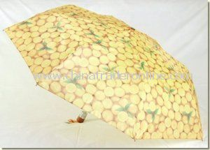 Automatic Custom Printing Lady Folding Parasol Umbrella