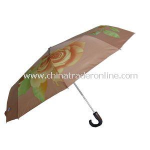3-Fold Advertising Umbrella