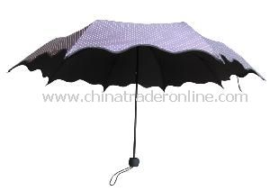 3-Folding Umbrella from China