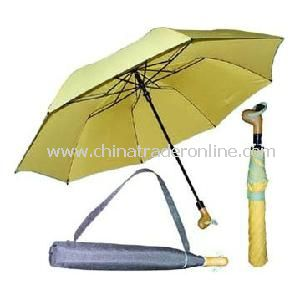 2 Section Golf Umbrella with Carry Bag